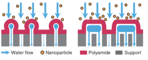 The authors' proposal for how the new membrane increases water purification rates.