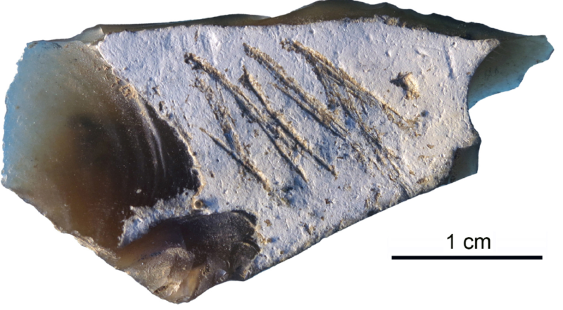 Neanderthals etched a message on this 36,000-year-old stone tool