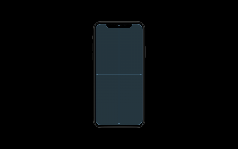 Apple graph of iPhone X display dimensions