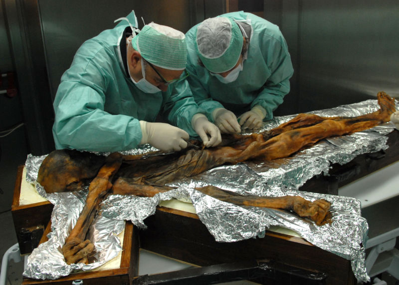 Ötzi the Iceman's last meal shows how Copper Age people ate on the run