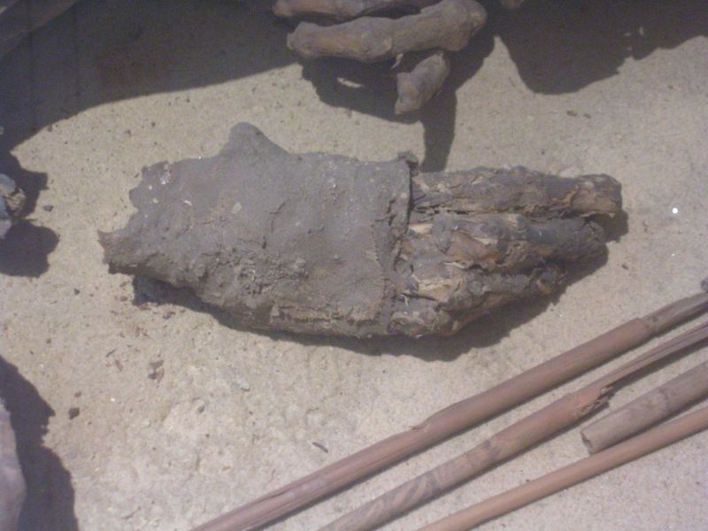 Ancient Egyptians had been making mummies longer than anyone thought