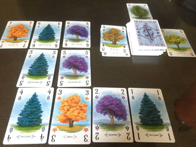 Arboretum may look pretty and serene, but it's really a cutthroat fight to the finish.