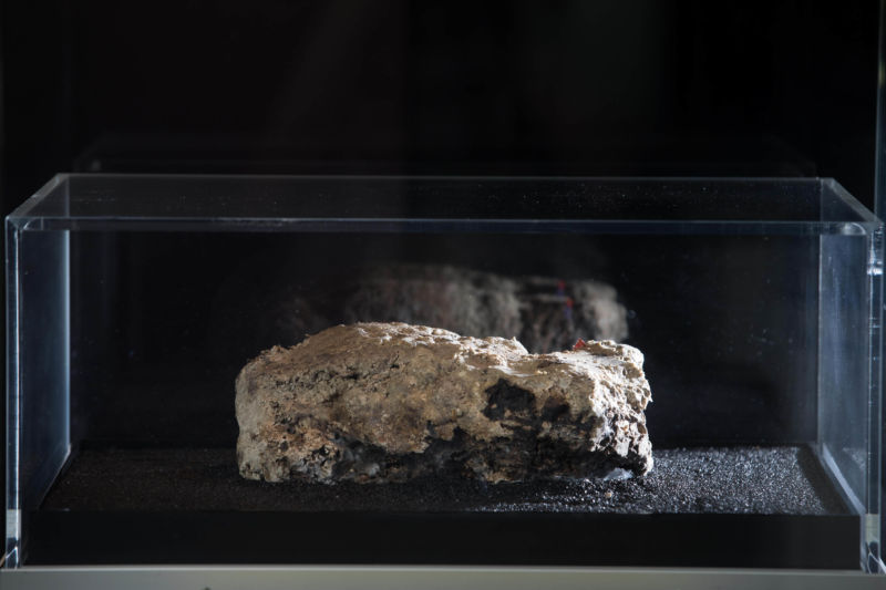 The fatberg sample in its box on display in the museum with a black background