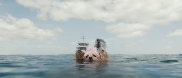 The Meg film review: We're going to need a stupider boat