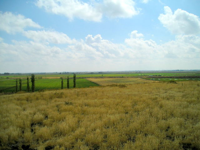 The modern-day fields around the archaeological site of Çatalhöyük.