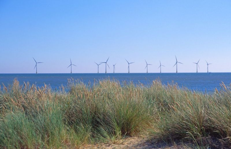 A view of wind turbines from the coast