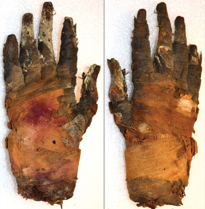 New imaging tech gives us the finger (of a mummy)