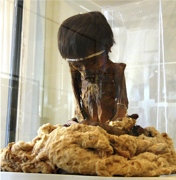 The Nasca Boy's remains are now on display in the National Museum of Ica, Peru.