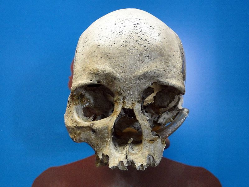 Ancient skull found among debris in burned Brazilian museum