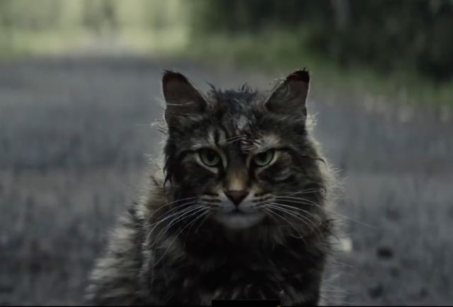 Pet Sematary remake may be the funniest film of 2019—no
