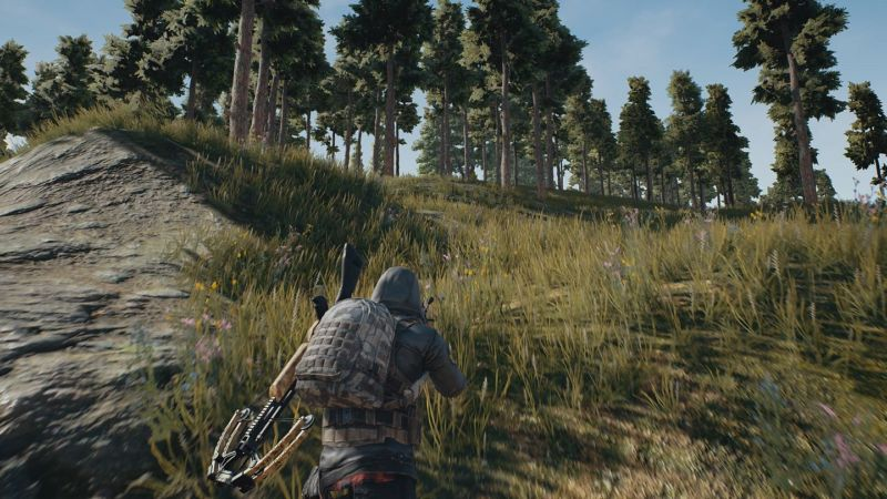 As Pubg For Ps4 Looms Xbox Unofficially Responds Have The Game For
