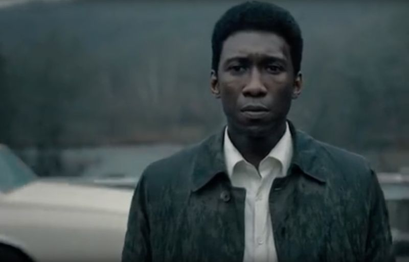 Detective Wayne Hays (Mahershala Ali) investigates a missing persons case while haunted by his past.