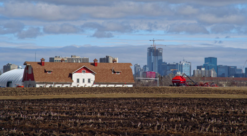 Image of fields and a barn with high-rise buildings in the background.