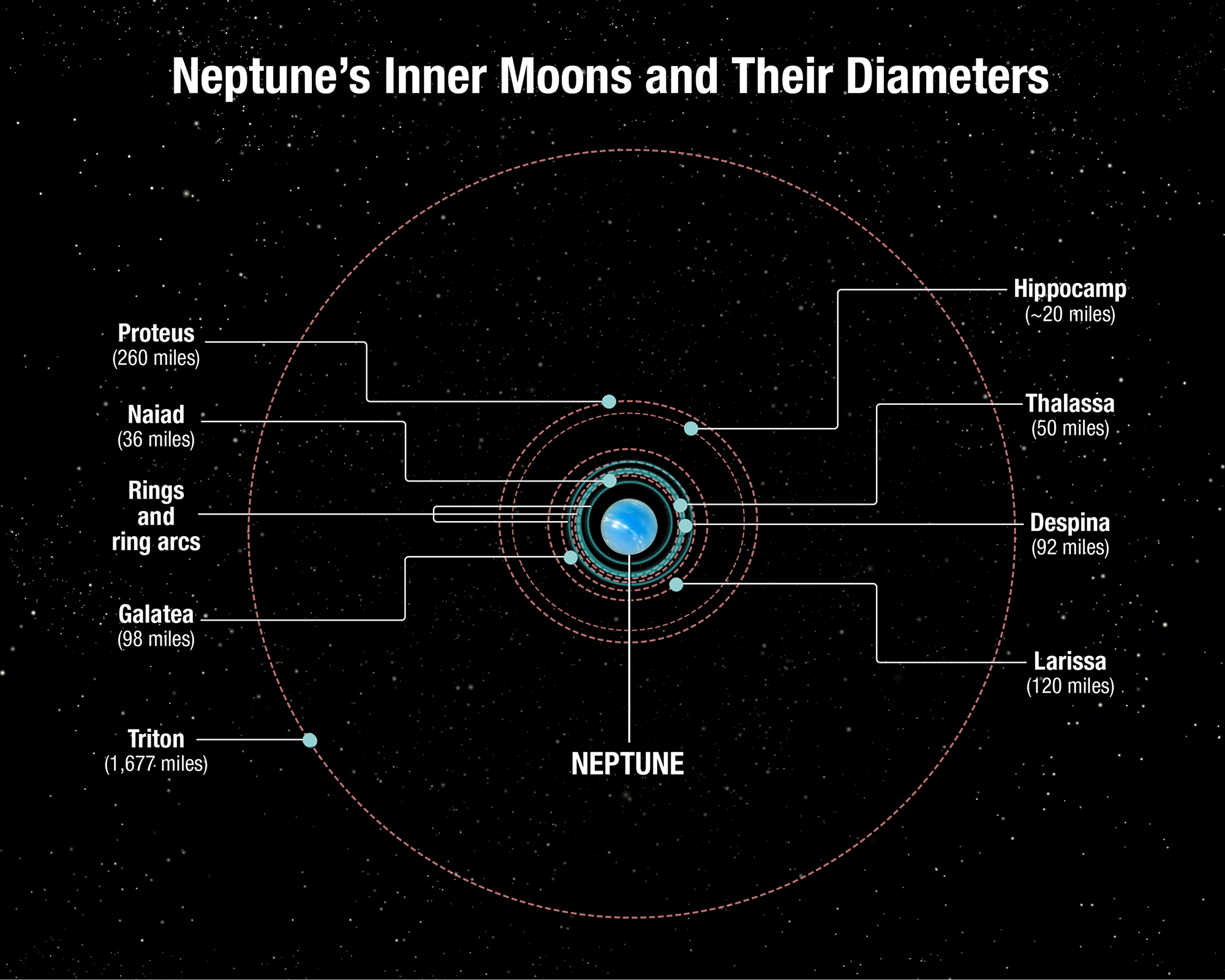 Neptune's inner moons and their radii, along with the captured Kuiper Belt Object Triton.