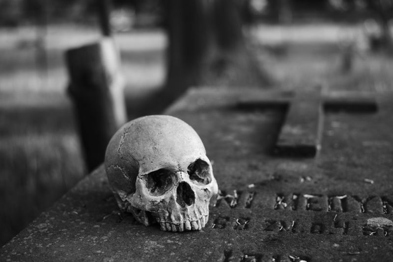 Black-and-white photo of a human skull in a graveyard.