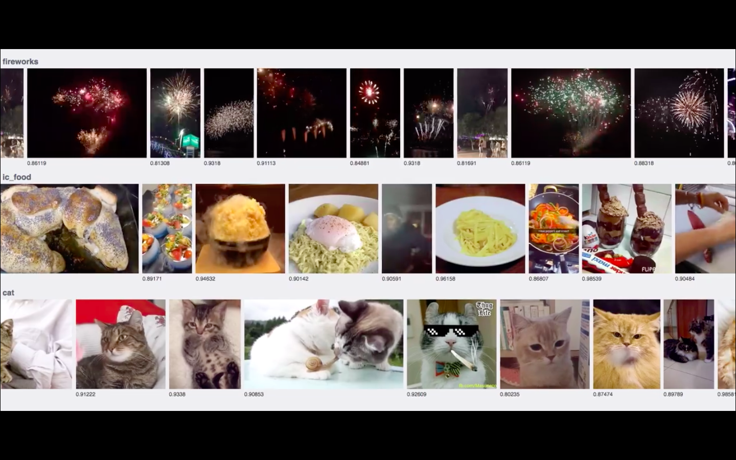 A still from a short video Facebook engineers posted that demonstrated real-time AI recognition of cat pictures (aka the holy grail for the Internet).