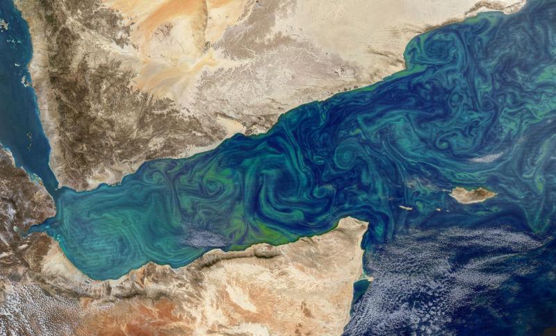 Plankton swirls in the Gulf of Aden between Yemen and Somalia.