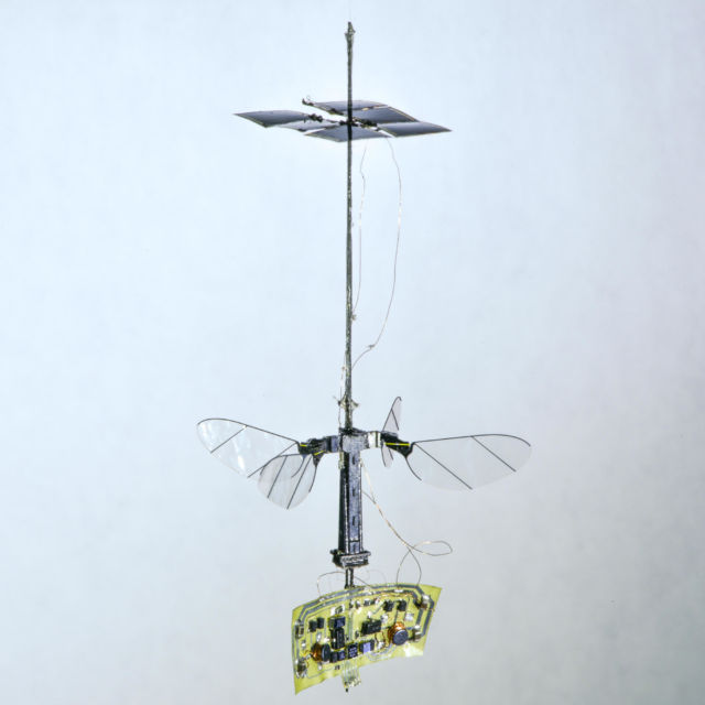 The full RoboBee X-Wing design, including the power and electronics.
