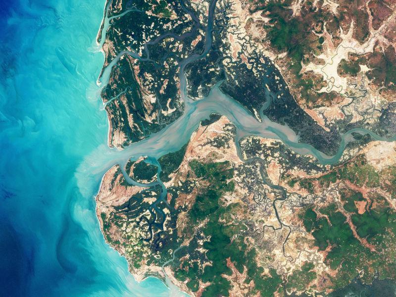 nasaeo_mangrove_casamance_oli_2018064_lrg-800x600