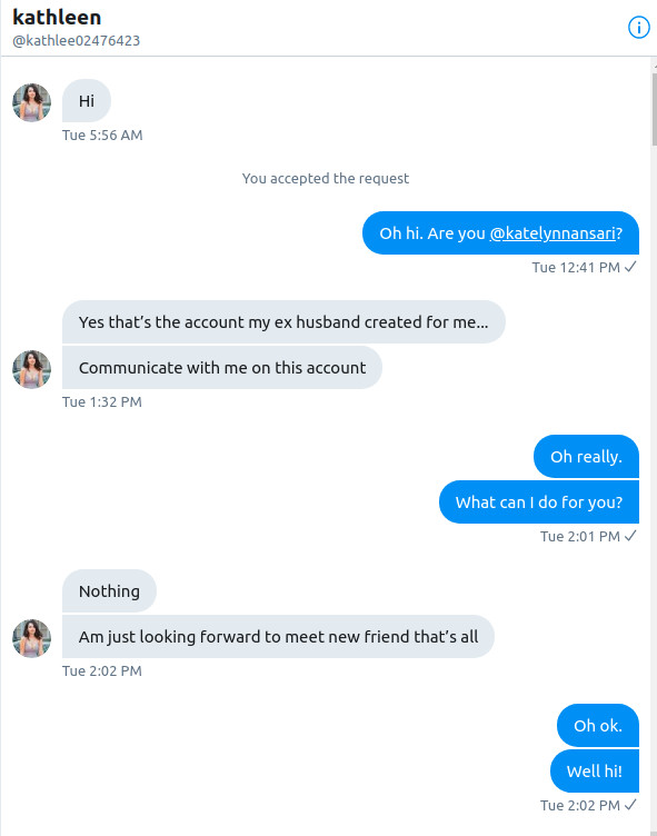Nigerian scammers slide into DMs, so Ars trolls them | Ars