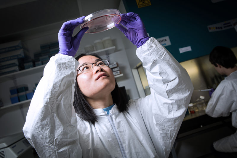 A researcher in goggles and scrubs examines a petri dish.