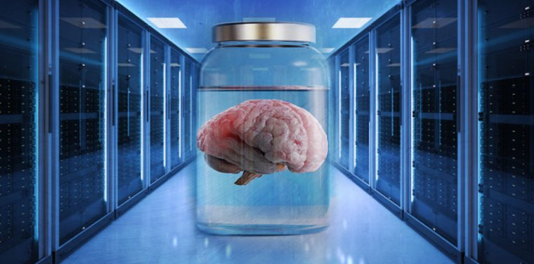 As far as we know, none of the storage vendors using AI have gone <a href='https://arstechnica.com/science/2019/07/brains-scale-better-than-cpus-so-intel-is-building-brains/'>neuromorphic</a> yet—let alone biological.