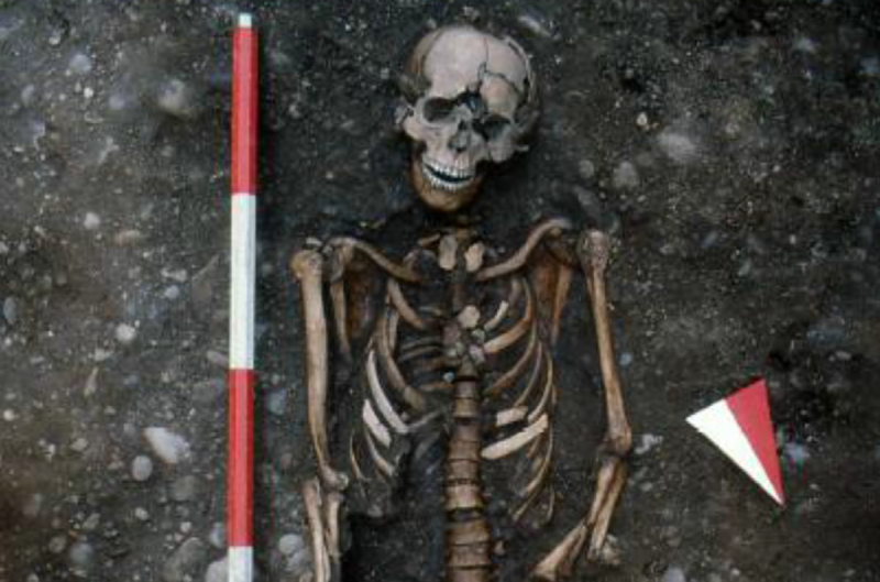 The skeleton was found buried with two buckles which likely once held a shroud in place.