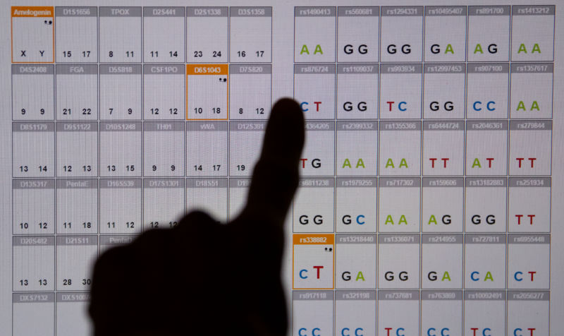 A DNA sequence analysis (genetic fingerprint) seen on a monitor in the Bavarian State Criminal Police Office in Munich, Germany.