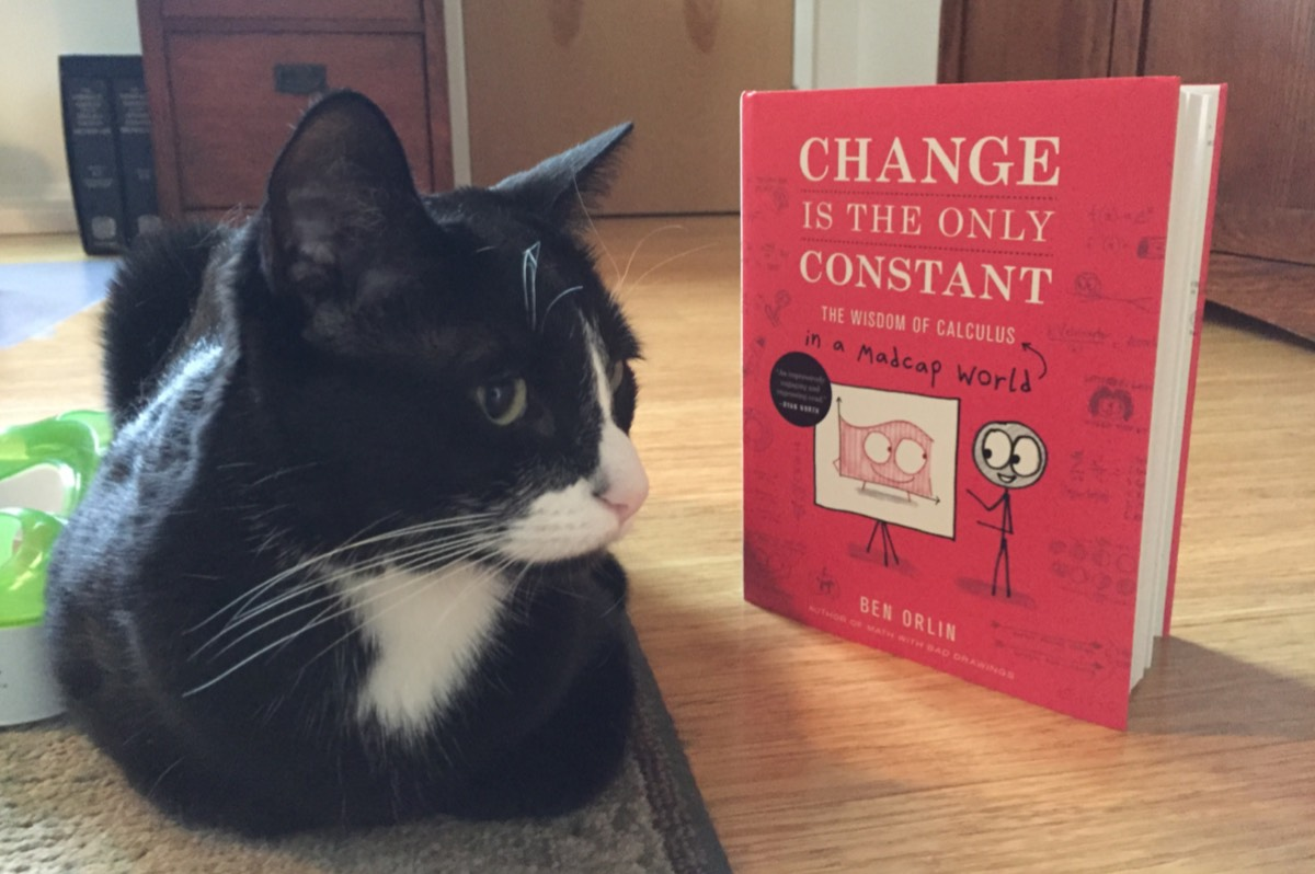 A cat named Caliban contemplates the wonders of calculus in everyday life.