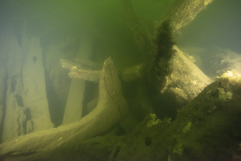 Photo of shipwreck timbers underwater