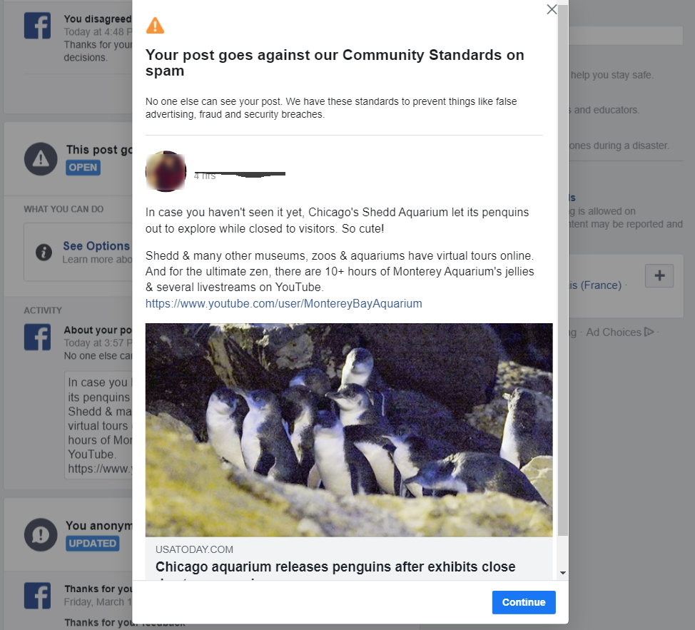 A YouTube video of penguins going free in a Chicago-area aquarium, flagged and taken down by Facebook.