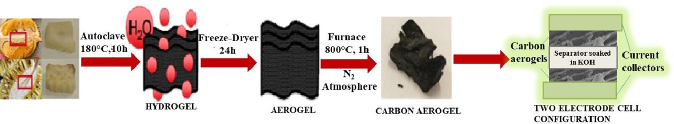 Schematic process for turning durian fruit into a carbon aerogel.
