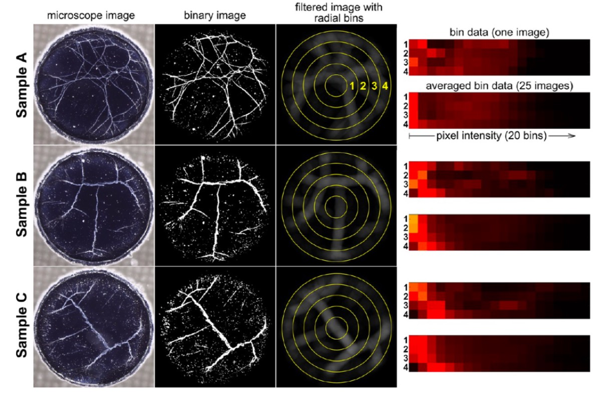 Analysis of microscope images of web patterns from American whiskey samples.