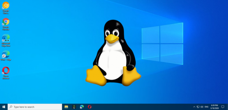 A computer monitor displays a penguin and a Windows logo.