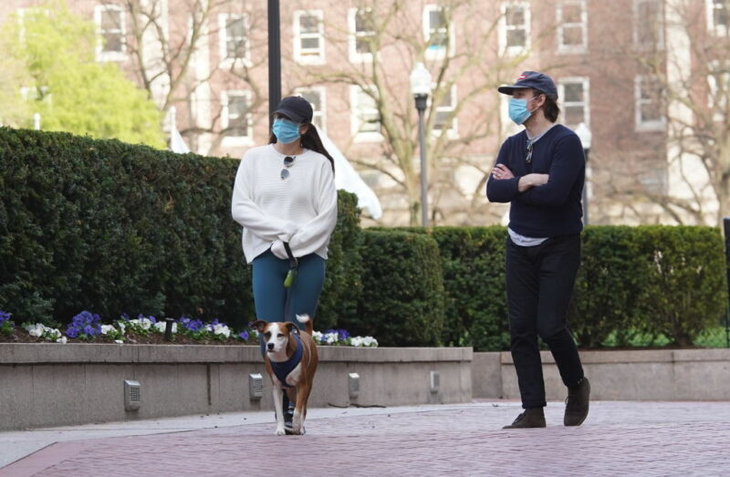 Image of two people walking a dog wearing face protection.