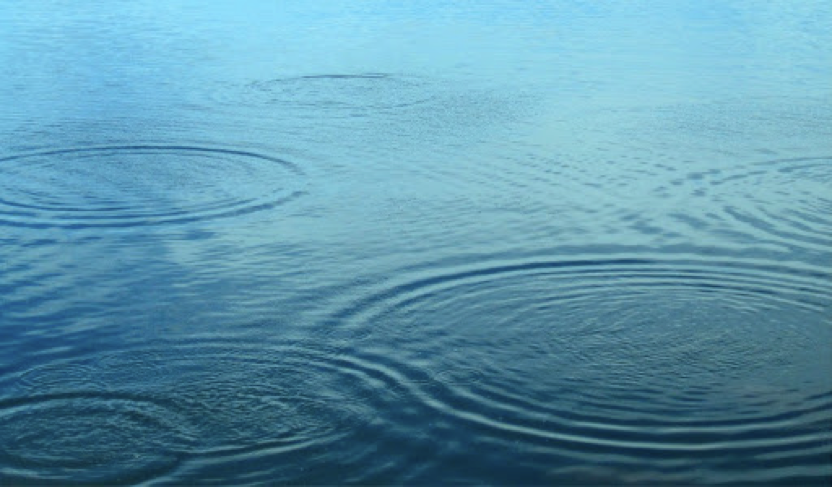 Ripples on a pond. Note the thickness of the ring of waves.