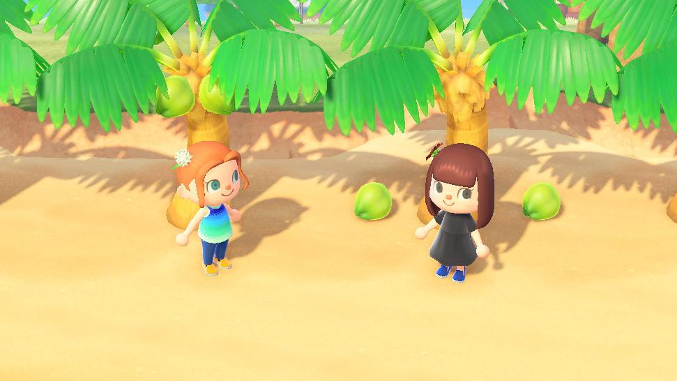 <em>Animal Crossing: New Horizons.</em>