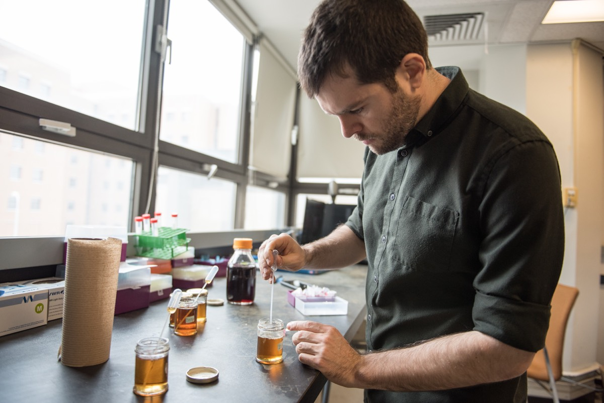 Co-author Simon Forest of the University of Montreal analyzes samples of maple syrup.