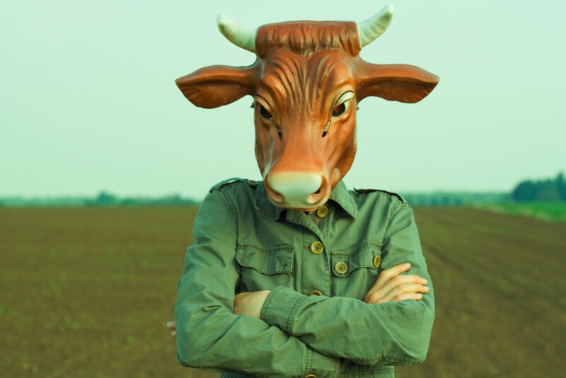 Thanks to Section 230, Twitter is not legally responsible for the content posted to its service by alleged bovines.