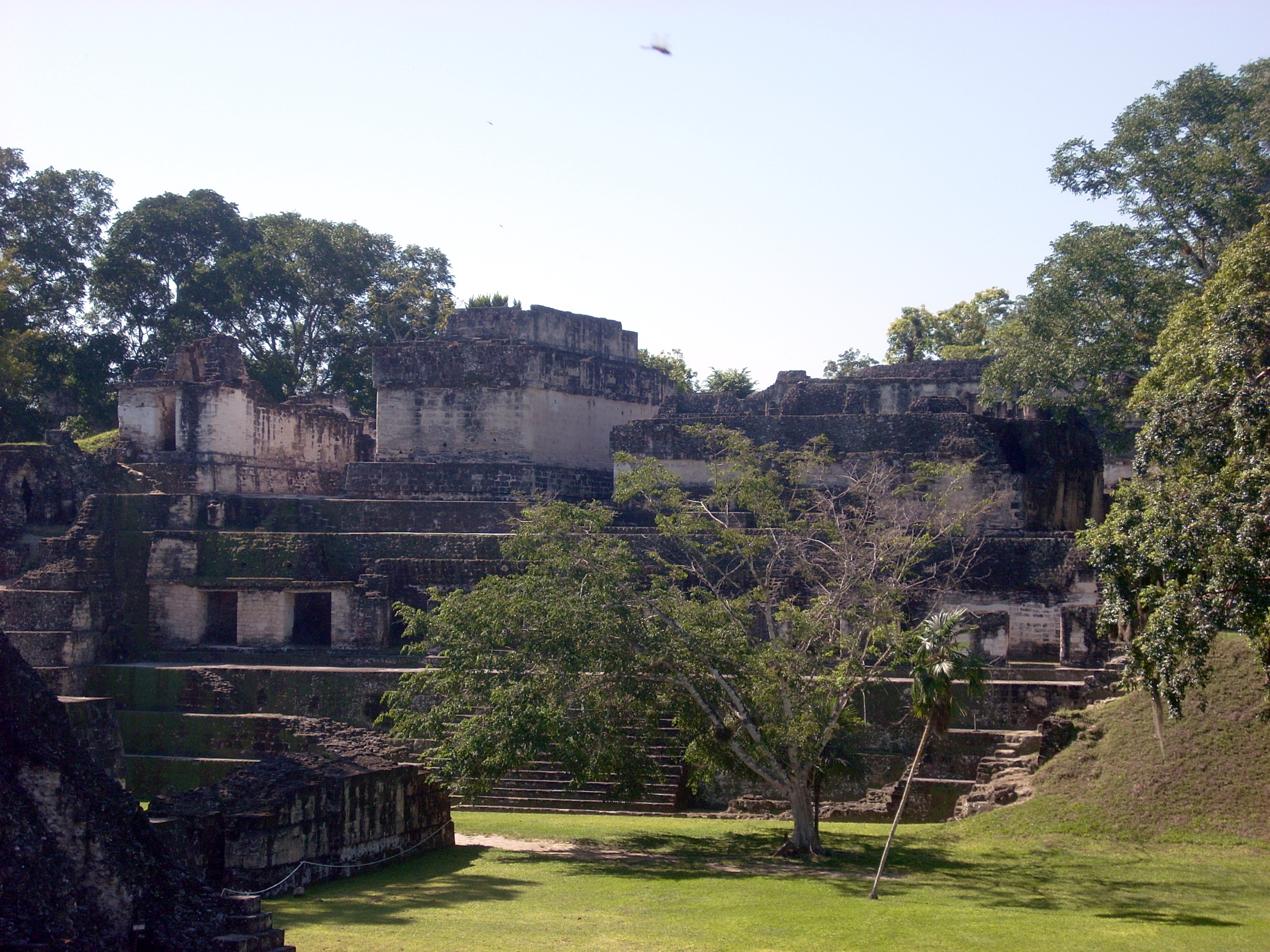 Tikal's Central Acropolis, seen here across the city's Great Plaza, would have drained into the Palace Reservoir.