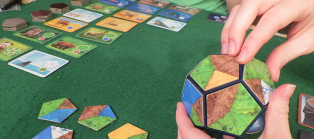 <em>Planet</em> is a nature-themed board game that isn't too complex for younger or less experienced players.