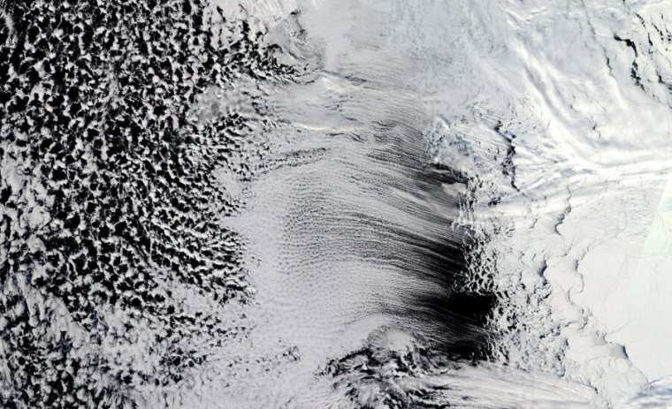 This photo of Antarctic ice looks like an abstract black-and-white painting.
