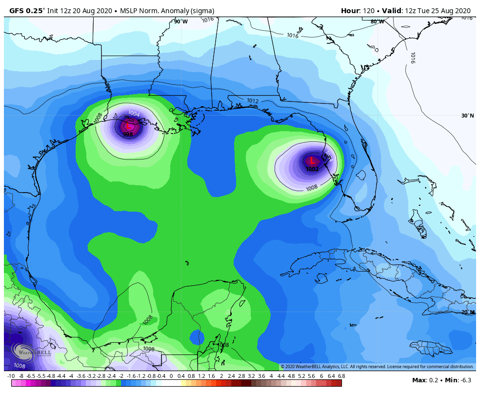 The 12z run of the GFS model from August 20 shows two tropical storms in the Gulf of Mexico early next Tuesday.