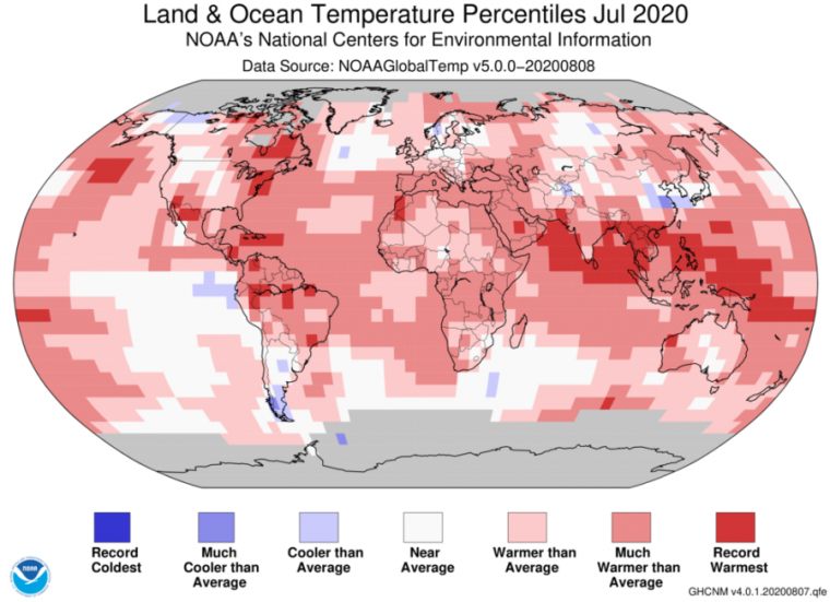 July was a hot one, but here's what NOAA sees ahead for the US