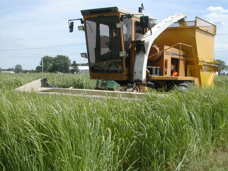 How much switchgrass could we grow for biofuels?