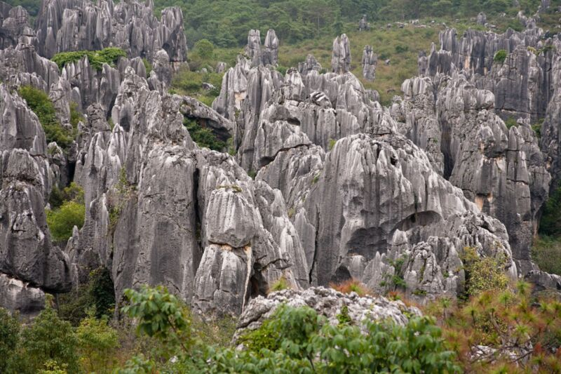 The Stone Forest (Shilin) in China's Yunnan Province may be the result of solids dissolving into liquids in the presence of gravity, producing natural convective flows.