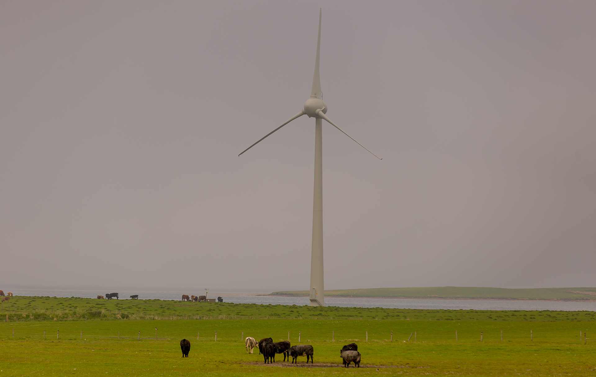 Windmills like this one provide 100 percent of the electricity grid which services residents of the Orkney Islands—a cable from that grid also supplied power to the <em>Northern Isles</em>, in addition to tidal turbines and wave energy converters.