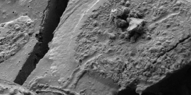 Archaeologists find evidence of neurons in glassy brain of Vesuvius victim