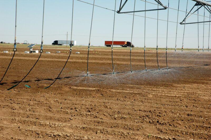 Low-hanging sprinklers irrigate seemingly barren farmland.