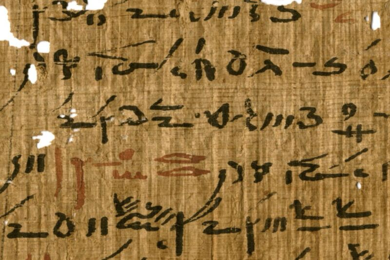 Detail of a medical treatise from the Tebtunis Temple Library with headings marked in red ink.